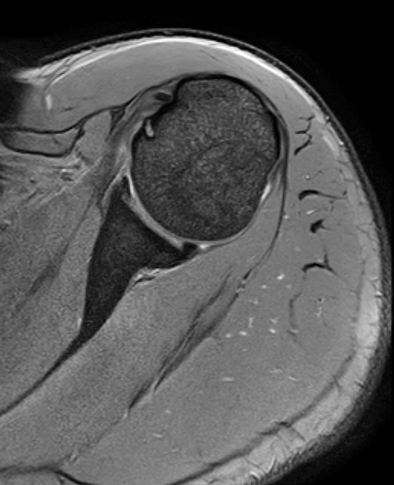 Bildergalerie - Radiologie